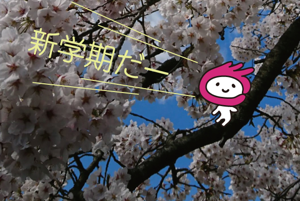eye-iguminsakura2